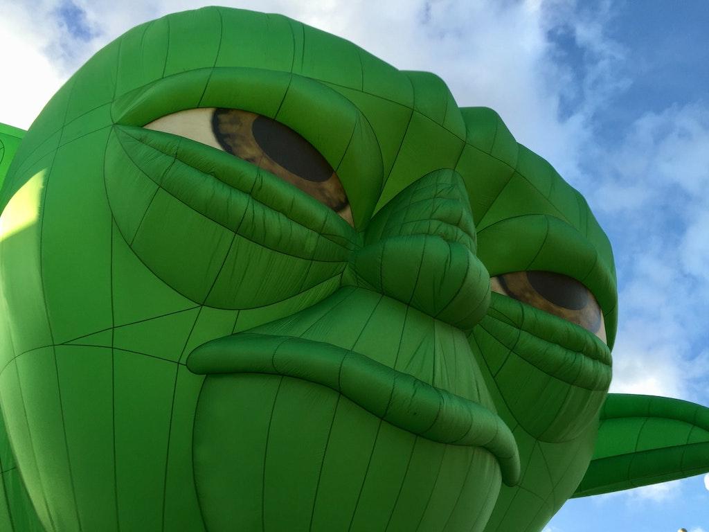 green-friday-black-friday-agence-link